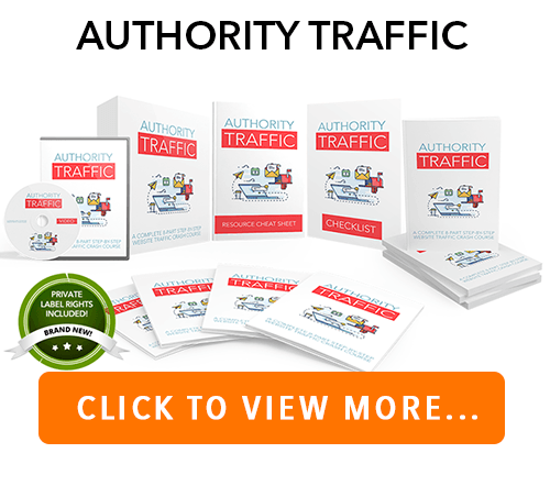 Website Traffic PLR Package