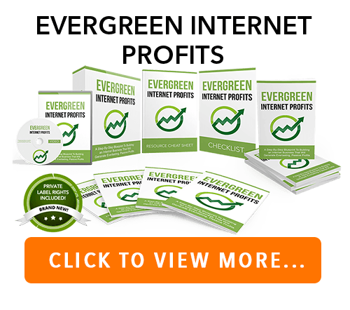 Evergreen Internet Business PLR Package