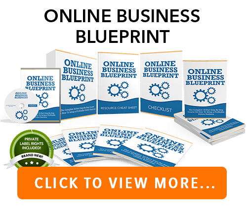 Online Business PLR Package