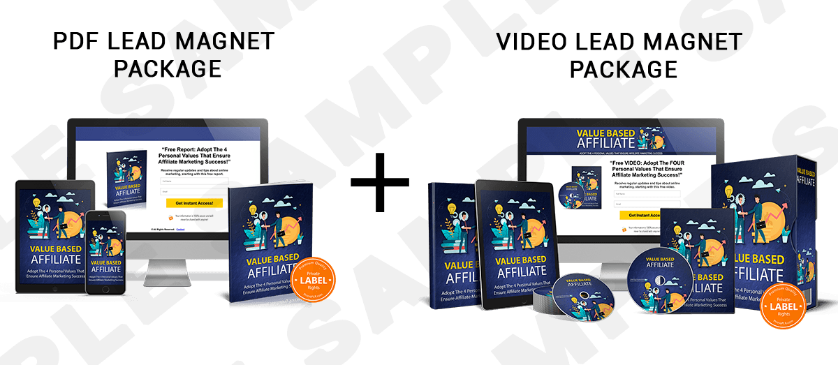 Sample PLR Video Lead Magnet