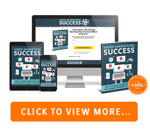 Video Marketing Success PLR